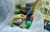 Роспотребнадзор сообщил о расширении сети лабораторий для тестирования на коронавирус