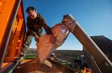 Сельскому хозяйству РФ грозит нехватка рабочей силы?