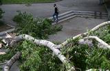 «Крыши срывало, дома сносило». В Алтайском крае, Кузбассе и Новосибирске прошли ураганы