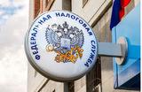 ФНС прокомментировала кейсы Business FM о проблемах бизнеса при получении госпомощи