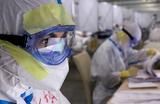 Мурашко заявил о 40 случаях смертей врачей от COVID-19. Насколько точное это число?