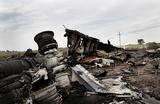 Нидерланды готовят иск к России в ЕСПЧ из-за сбитого над Донбассом Boeing