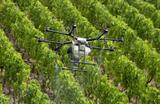 Швейцарские виноделы используют дроны для обработки виноградников фитосанитарным раствором во время пандемии коронавируса COVID-19.