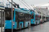 Москва — без троллейбусов. В чем плюсы и минусы их ликвидации?