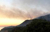 Пожар в заповеднике «Утриш» полностью ликвидирован