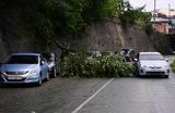 Во Владивостоке ураган рекордной силы: ветер сдувает крыши, машины, деревья