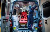 Жительница Нидерландов заразилась лихорадкой денге на юге Франции