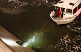 Зеленое пятно в Москве-реке неопасно — это показали пробы воды