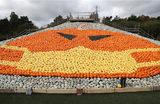 Инсталляция из шести тысяч тыкв и кабачков на ферме Саннифилдс в британском Тоттоне в преддверии Хэллоуина.