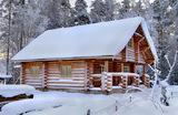 Новый год в Подмосковье: сколько стоит аренда и есть ли еще из чего выбирать?