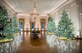 «Поразительно нормальное». СМИ оценили рождественское убранство Белого дома
