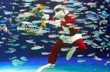 Дайвер в костюме Санта -Клауса во время рождественского шоу в океанариуме Sunshine Aquarium в Токио.