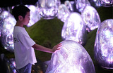 Интерактивная инсталляция Garden Area в музее teamLab Planets в Токио.