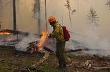 Ликвидация лесных пожаров в Якутии. По данным Минэкологии, в местных лесах тушат 93 пожара общей площадью 236,9 тысячи гектаров. С 1 июля в Республике Саха введены ограничения на посещение лесов в связи с режимом ЧС.