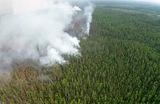 Лесные пожары в Якутии.