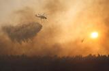 Борьба с природным пожаром к северу от Афин. Греция.