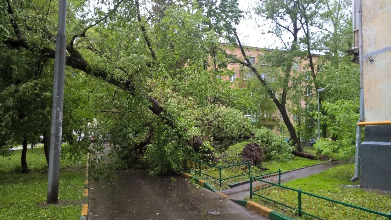 Московский шторм разрушил энергетическую пирамиду Голода наНоворижском шоссе
